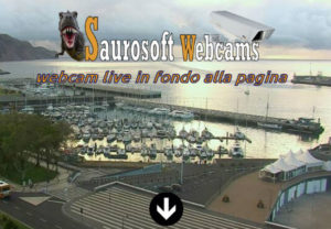 Saurosoft Webcams - Madeira