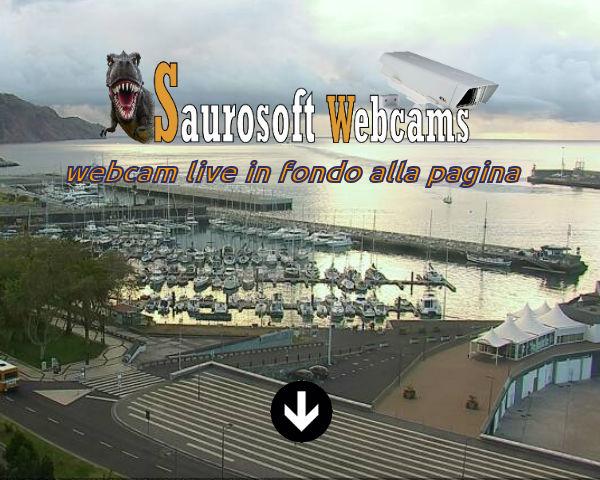 Saurosoft Webcams – Madeira