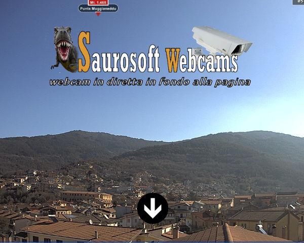 Saurosoft webcams – Webcam Tonara