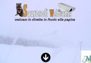 Saurosoft webcams - Alpe di Siusi (BZ)